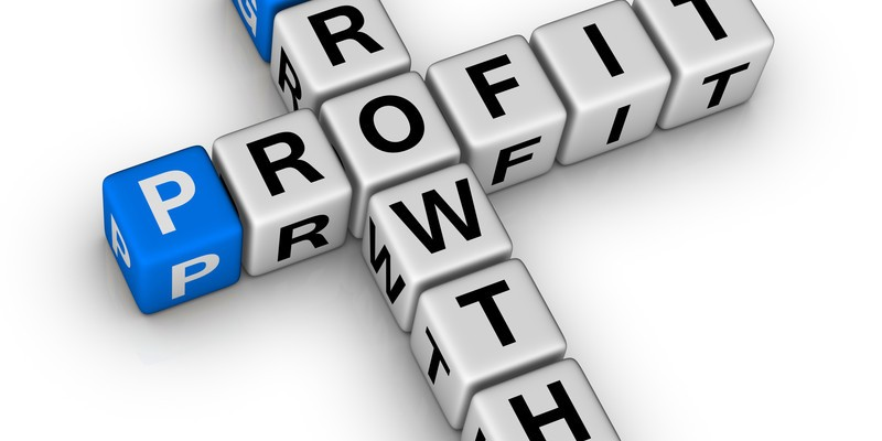 Is Profit Really More Important Than Growth?